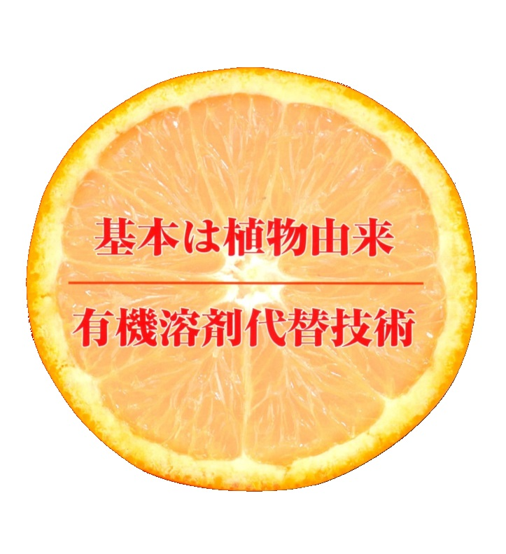 エコイメージ画像
